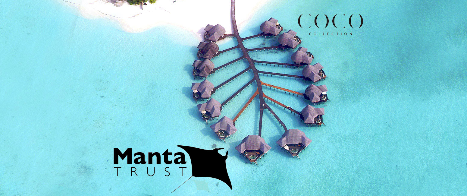coco-collection-Manta-Trust