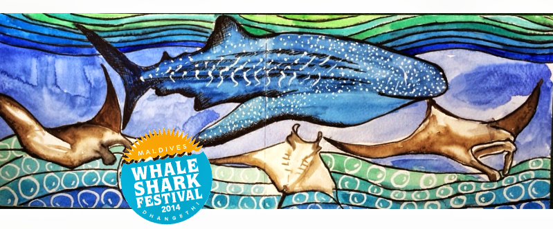 The 2nd Annual Maldives Whale Shark Festival will be held in Dhangethi Island on  6th December 2014