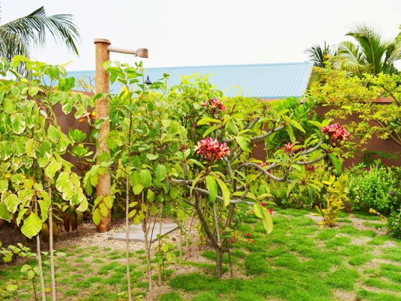 Tropical flowers-Horsburgh Island Guest House