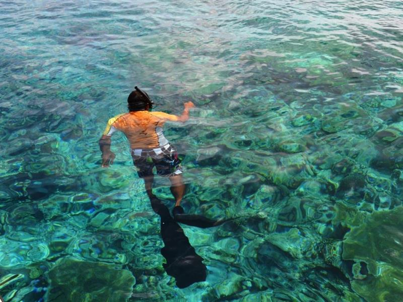 Snorkeling-Horsburgh Island Guest House