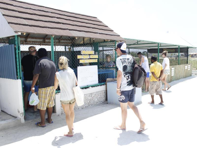 Visiting turtle hatchery-Naifaru Nafaa Inn