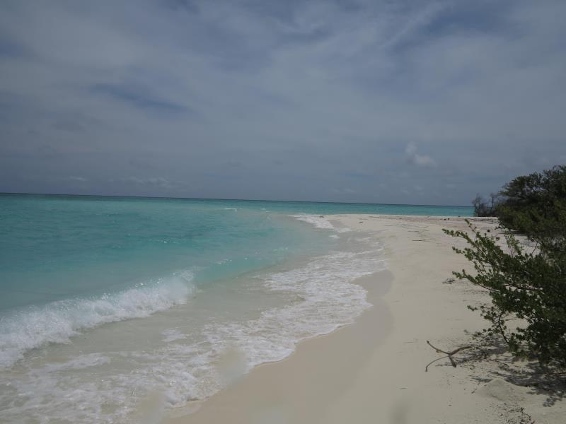 Beach sand bar -Naifaru Nafaa Inn