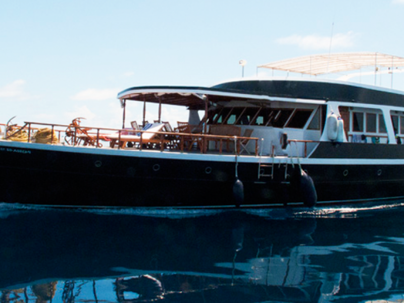 Black pearl the liveaboard