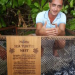 Marine Biologist Hamid Rad with 69 baby green turtles, Naladhu Maldives
